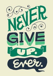 Never Give Up3